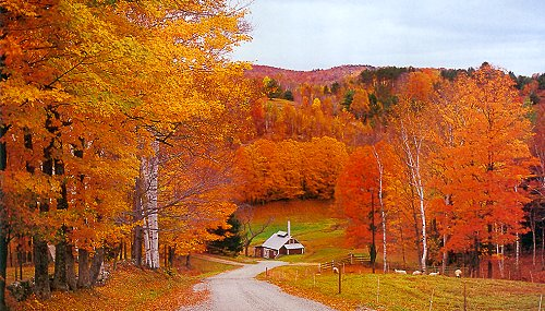 Thanksgiving In Vermont Octavia S Vintage