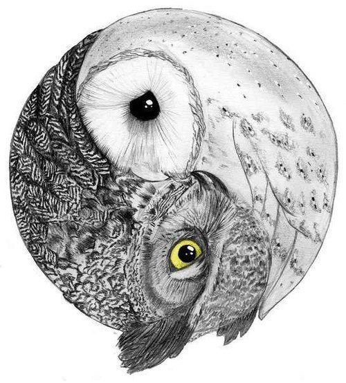 30087ece548d8666fee54c10d82d6b99--owl-tattoos-tatoos